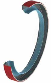 pioneer weston,eriks,ptfe,rotary lip seal